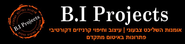 B.I.Projects - איתי בכר פרוייקטים